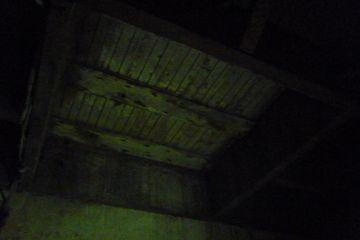 2017-11-05 1027 Trapdoor in Princess Theatre basement.JPG